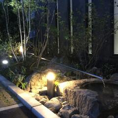 庭/造園/和風庭園/ライティング/エクステリア/外構/... 門真の庭(夜)