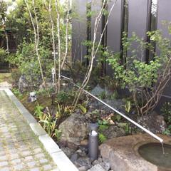 施工例/造園/エクステリア/庭/外構 門真の庭