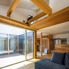 中庭のある家/中庭/リビング/キャットハウス/キャットタワー/キャットウォーク/... ねことの暮らし♪ : ■haus-wal…