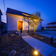 生活/外構工事/ロックガーデン/オリーブ/新築一戸建て/住宅/... 自粛明けてオリーブの植栽、ロックガー…