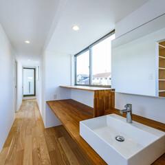 廊下/ねこ/カウンター/手洗い/洗面台/マイホーム/... 2階トイレ前の手洗いカウンター、下は猫ち…