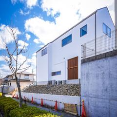 ねことの暮らし/ねこと暮らす/猫との暮らし/猫と暮らす/設計/キャットドアー/... 昨日も外構工事中の神戸市北区の猫と暮らす…(9枚目)