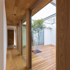 タモ/ウッドデッキ/中庭/廊下/玄関/interior/... 玄関入ると直ぐに中庭が見えます♪ またガ…