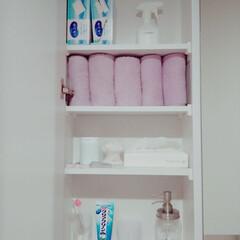 片付け/おうちの美化委員/洗面所/タオル収納/収納/暮らし 洗面所の鏡の扉の中です。 タオルは、左O…