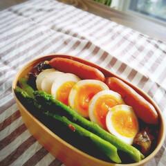 おうちごはん/かんたん/レシピ/弁当記録/お弁当/味付けたまご 今朝のお弁当記録🍱 そぼろチャーハンを敷…