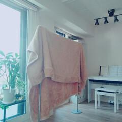 毛布/毛布洗濯/洗濯グッズ/洗濯アイデア/洗濯アイテム/洗濯/... ダブルサイズの毛布を洗濯しました。  室…