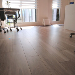 シンプルライフ/今朝の様子/趣味/おうちの美化委員/床/片付け/... 今朝の様子。 最近の趣味(?)は、床面積…
