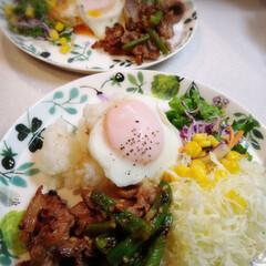 ナルミボーンチャイナ アンナ・エミリア『クローバーガーデン』 24cmプレート(皿)を使ったクチコミ「昨日の晩御飯です。 ワンプレートって、配…」