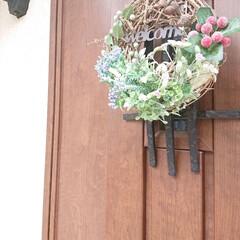 100均/フェイクグリーン/ナチュキチ/玄関ドア/ハンドメイド/リース 玄関にリースを飾ってみました♪ ボリュー…
