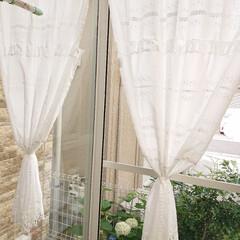 ハンドメイド/カフェカーテン/サンルーム/暮らし/節約/ニトリ サンルームにカフェカーテンを使って、オリ…