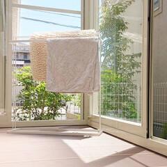 タオル掛け/サンルーム/ニトリ/令和元年フォト投稿キャンペーン 今日は天気が良いので朝洗濯物したものが直…