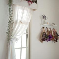 観葉植物 フェイクグリーン ボタンリーフバイン〔×12本入り〕アレンジメント/インテリア(人工観葉、フェイクグリーン)を使ったクチコミ「小窓のカーテン洗ってから、アイロンしまし…」(1枚目)
