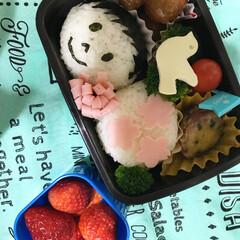 卒園/お弁当 幼稚園最後のお弁当🍙