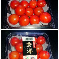 トマト/フード スーパーで、 お初のトマトを見つけると …