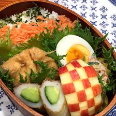 愛犬/お弁当/夏ファッション/犬 娘弁当♡ 青菜と鮭フレークご飯 肉詰め油…