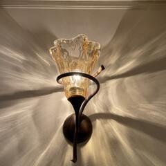 壁/通路/家電/ルームライト/リビング/照明 お気に入りのルームライト。 ダイニングか…(1枚目)