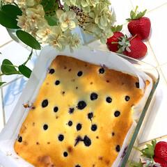 ブルーベリー/おやつ/ブルーベリーチーズケーキ/カルディ 久々にチーズケーキ焼きました♡ 皆さんの…