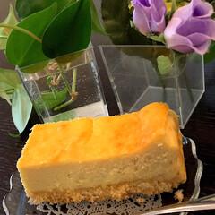 チーズケーキ 厚焼き卵じゃないよ🎵 チーズケーキ💖 混…(2枚目)