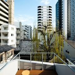 ルーフバルコニー/ルーフテラス/屋上/スカイツリー/建築/住まい 蔵前の小さな家