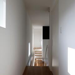 建築 『那須の家』廊下  各寝室の独立性を確保…