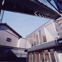 注文住宅/中庭 『中村の家』中庭