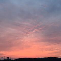 空/夕方 綺麗なオレンジ色