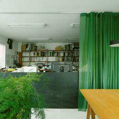 カーテン/間仕切り/緑 事務所の間仕切りとして、カーテンを採用し…