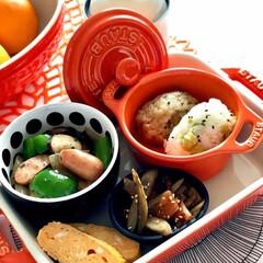 地味弁/秋色弁当/弁当/レンジでチン 毎日朝が早い主人の秋色弁当🍙 朝食弁当🍙…