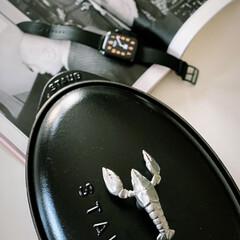 ストウブ(staub)専用アニマルノブ チキン 40509−346 ストウブ | STAUB(その他調理用具)を使ったクチコミ「キッチンメーカー ストウブの鍋を20年以…」