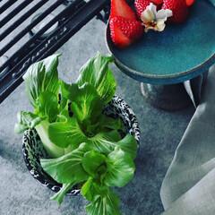 野菜の切れ端料理/信楽/青い器/テーブル/旬の野菜/イチゴ/... 野菜の不思議🥬  何十年も青梗菜調理…(2枚目)