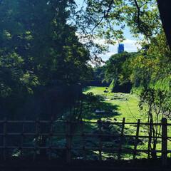 風景/秋/名古屋城/お城/公園/名城公園/... 名古屋城までお出かけ 名古屋はとても暑い…