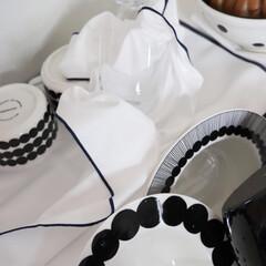 KB SEIREN セイレーン そうじの神様 食器拭きにもなる水切りマット(モップ、雑巾)を使ったクチコミ「最近 取り入れた アイテムの一つ 速乾性…」