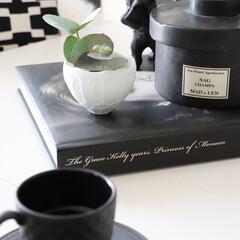 部屋の香り/インテリア雑貨/鉄好き/鉄フェチ/鉄/フレグランス/... 雑貨大好き❤ 白黒で囲まれて生活している…