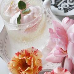 ガーディニング/日常/庭のある暮らし/ローズウォーター/バラのミネラルウォーター/オレガノケントビューティー/... 庭のバラは無農薬で育ててます😊 香りはダ…