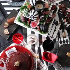 アスティエドヴィレット/クリスマスディスプレイ/クリスマス/クリスマスツリー/キッチン雑貨/雑貨/... クリスマスがやって来た もうクリスマス …