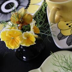 マリメッコケスティット/マリメッコ/北欧/インテリア雑貨/生花のある暮らし/テーブルフラワー/... 庭の花をインテリアに取り込む 毎日365…