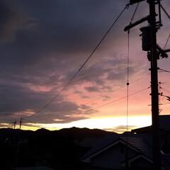 カット/夏バージョン/風景/夕日/夕焼け/癒し/... 昨日は、トリミングに行ってきました🎵 そ…(6枚目)