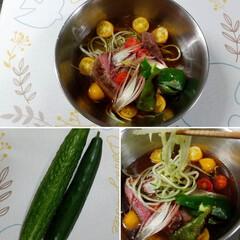 きゅうり/冷麺/麺がきゅうり/家庭菜園/一品/夏の食べ物/... 自宅で育ったきゅうり~(*´艸`*) ま…