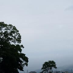 夕焼け風景/夕暮れ/花/散歩道/梅雨/梅雨対策/... 毎日☔が続いてますぅ… 怒アップ〰️🤭 …(6枚目)