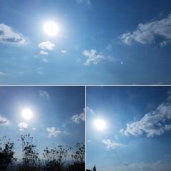 可愛い雲/雲/花雲/空/景色/旅空/... 車内から 可愛い🌼形の雲 見~つけた。:…
