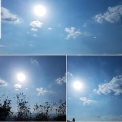 明るくなる空/花雲/空/風景/わたしのお気に入り 明るい空を投稿したくて🌼雲を再度投稿しま…