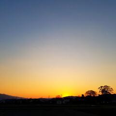 夕焼け/わたしのお気に入り/フォロー大歓迎/おでかけ/風景/春の一枚/... 🌅春うららかな夕やけ 🐩🚶♀️  この…