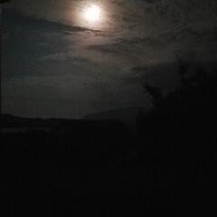 「月夜 今夜の月🌃✨ 何故かピンクに光って…」(2枚目)