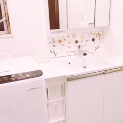 引き出しケース/洗面台/洗面所/見た目スッキリ/すき間収納/スッキリ/... *洗面所* 洗面台と洗濯機のすき間を利用…