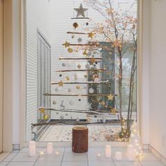 クリスマス/クリスマスツリー/手作りツリー 枝を使って、ツリーを作りました🎄  壁面…