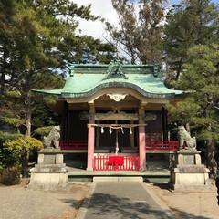 パワースポット 浜松の東照宮です!
