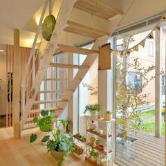 お洒落な階段/大きな窓/ウッドデッキのある家/階段/スケルトン階段/木の階段/... 南側に向けて大きく開いた窓が、スケルトン…