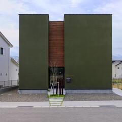 注文住宅/建築家と建てる家/個性的な家/外壁の色/外観/グリーンな壁/... 『どこにでもあるような家では満足できない…
