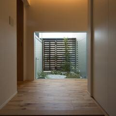 玄関/中庭/光のある玄関/お洒落な照明/見晴のよさ 玄関を開けると、そこはちょっとした中庭が…