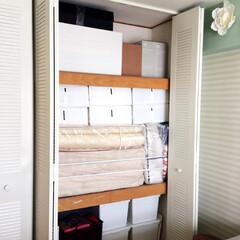 モノトーン化/布ガムテープ/飾り人形/収納 【うちの収納】 飾り人形の箱、扇風機の箱…